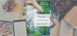 Couverture du roman Une nuit, je dormirai seule dans la forêt de Pascale Wilhelmy, paru chez Libre Expression.