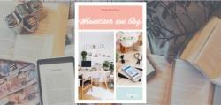 Couverture du livre Monétiser son blog de Nessa Buonomo.