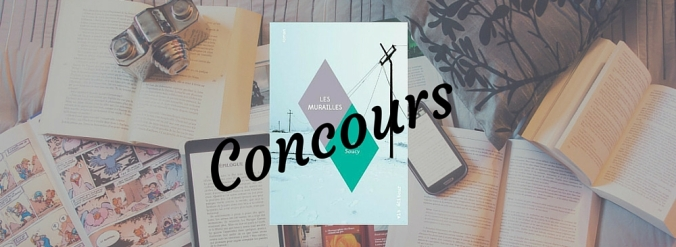 Page couverture du livre Les murailles d'Erika Soucy