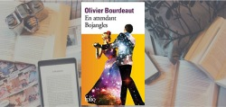 """Couverture du roman """"En attendant Bojangles"""" de Olivier Bourdeaut."""